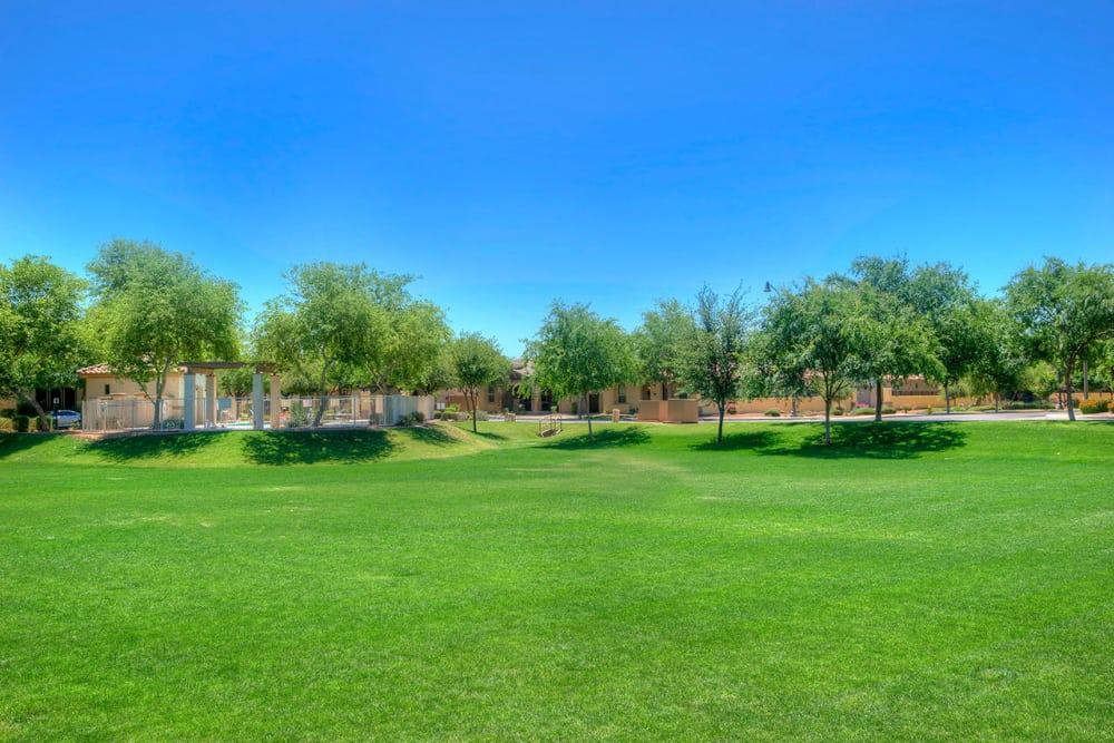 Large open grass areas at BB Living at Higley Park in Gilbert, Arizona