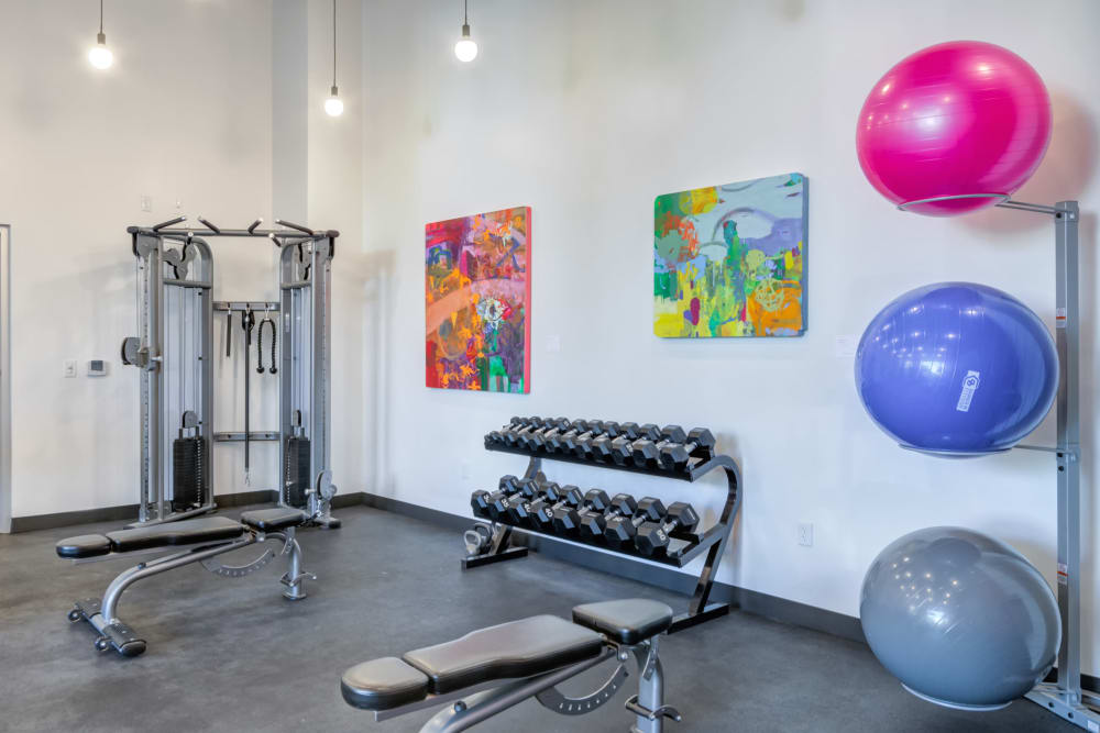Weights and exercise equipment at Nelson Kohl Apartments in Baltimore, Maryland