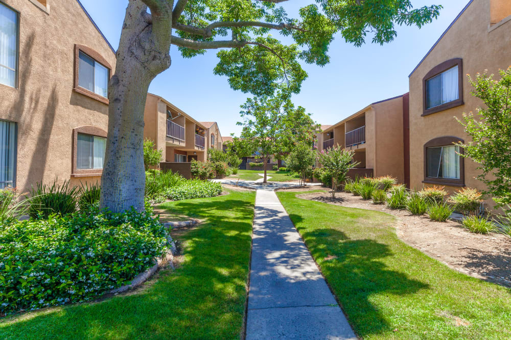 Walking Paths at West Fifth Apartments in Ontario, California