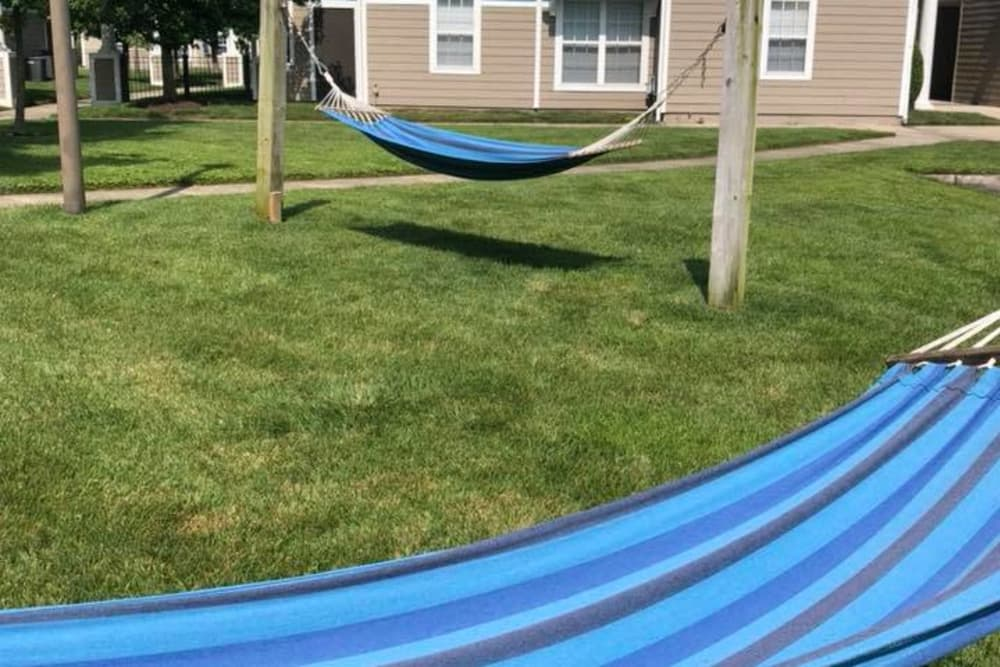 Hammocks at The Flatts Salisbury in Salisbury, Maryland