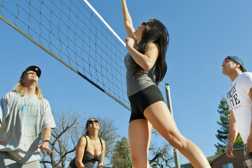 Residents playing volleyball outside on a beautiful day at Pine Tree Apartments in Chico, California