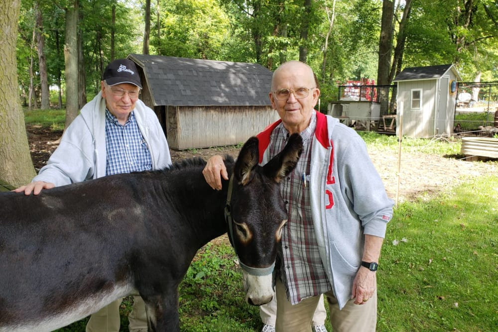 Residents petting a friendly donkey at The Heritage in Findlay, Ohio