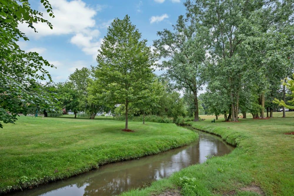 Beautiful scenery at Creek Club Apartments in Williamston, Michigan