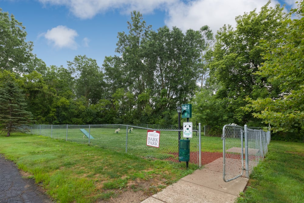 Onsite dog park at Creek Club Apartments in Williamston, Michigan
