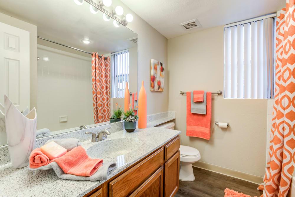 Bathroom at Renaissance Apartment Homes in Phoenix, Arizona