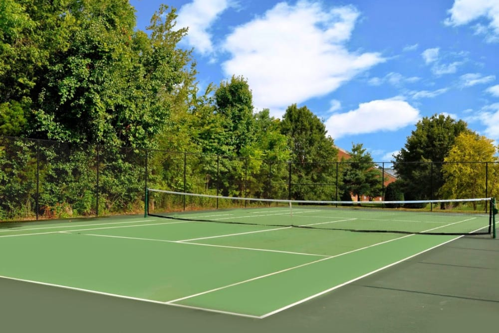 A full-size tennis court surrounded by greenery at Goldelm at Metropolitan in Knoxville, Tennessee