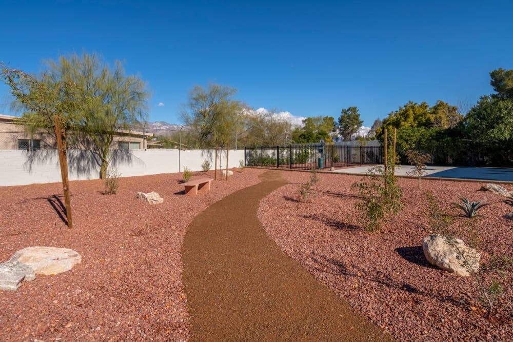 Our beautiful apartments in Tucson, Arizona showcase walking paths