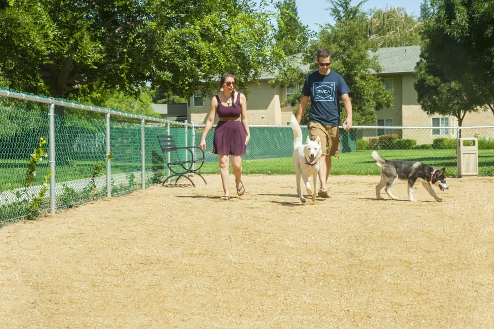 Residents walking their dogs at the dog park at Oak Meadow Apartments in Chico, California