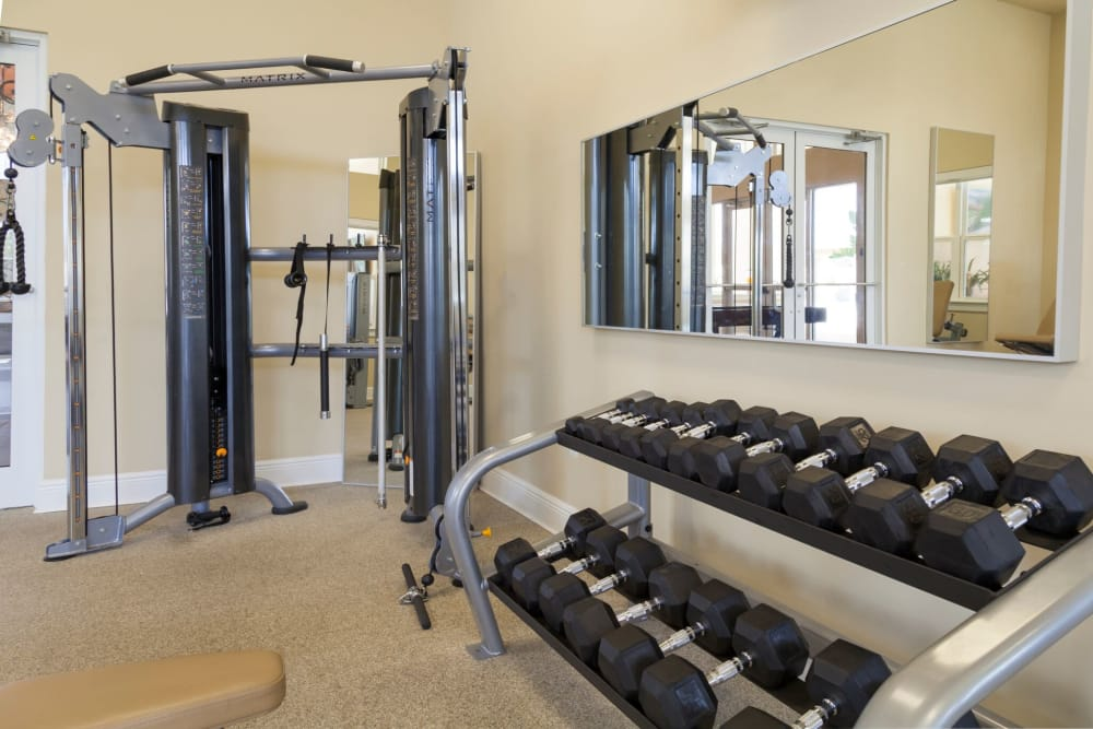 Weights for fitness at The Gate Apartments in Champions Gate, Florida
