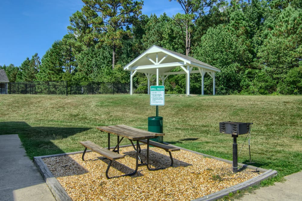 Dog park at Park at Clearwater in Aberdeen, North Carolina