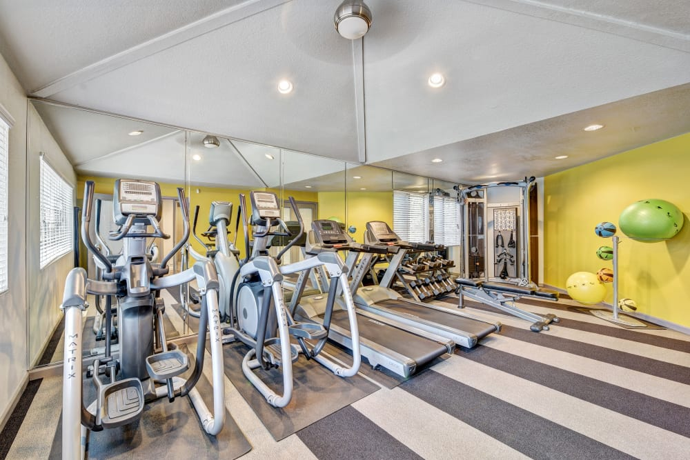Fitness center at Terra Martinez in Martinez, California