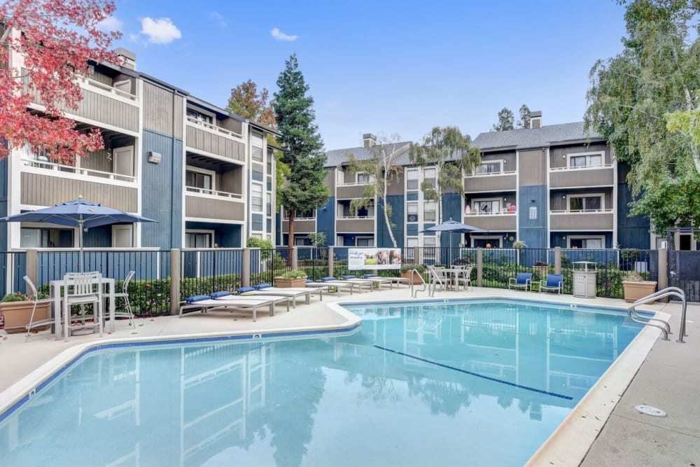 Swimming pool at Terra Martinez in Martinez, California