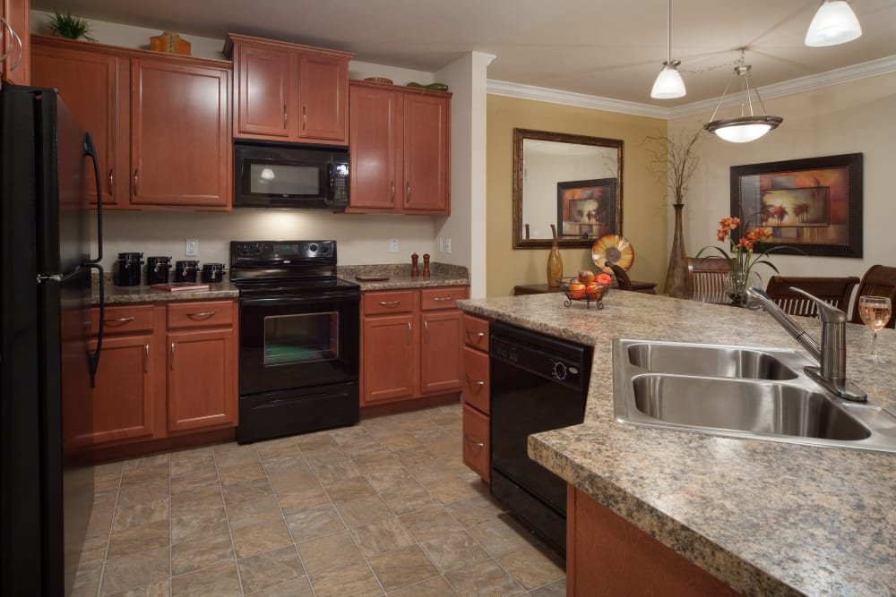 Black appliances in kitchen at Villa Grande on Saxon in Orange City, Florida