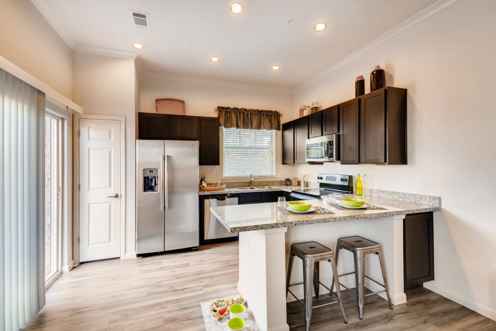 Stainless-Steel appliances at Avilla Heritage in Grand Prairie, Texas