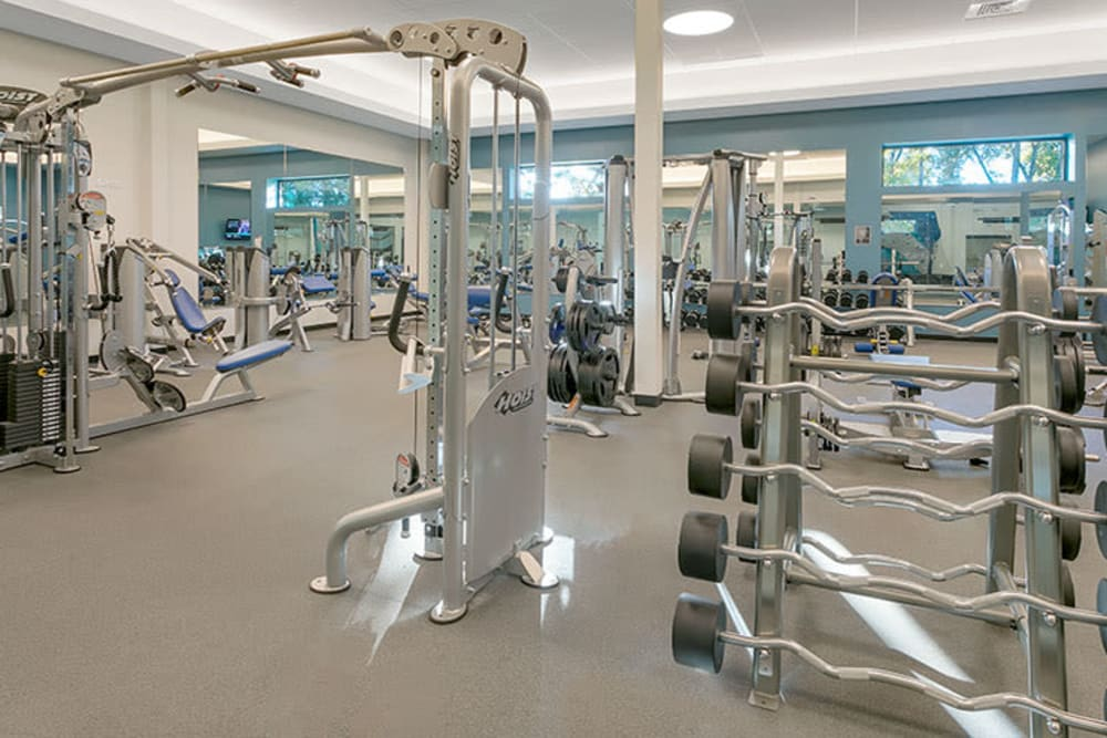 Weights and exercise equipment in gym at TAVA Waters in Denver, Colorado