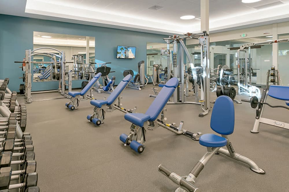 Exercise equipment and gym at TAVA Waters in Denver, Colorado