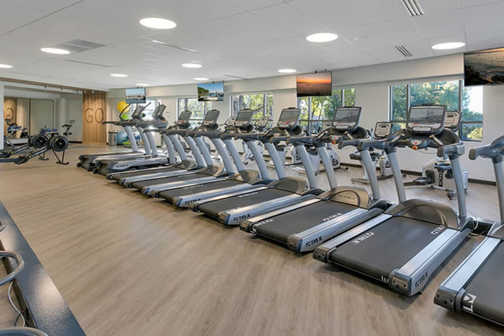 Treadmills and other exercise equipment in gym at TAVA Waters in Denver, Colorado