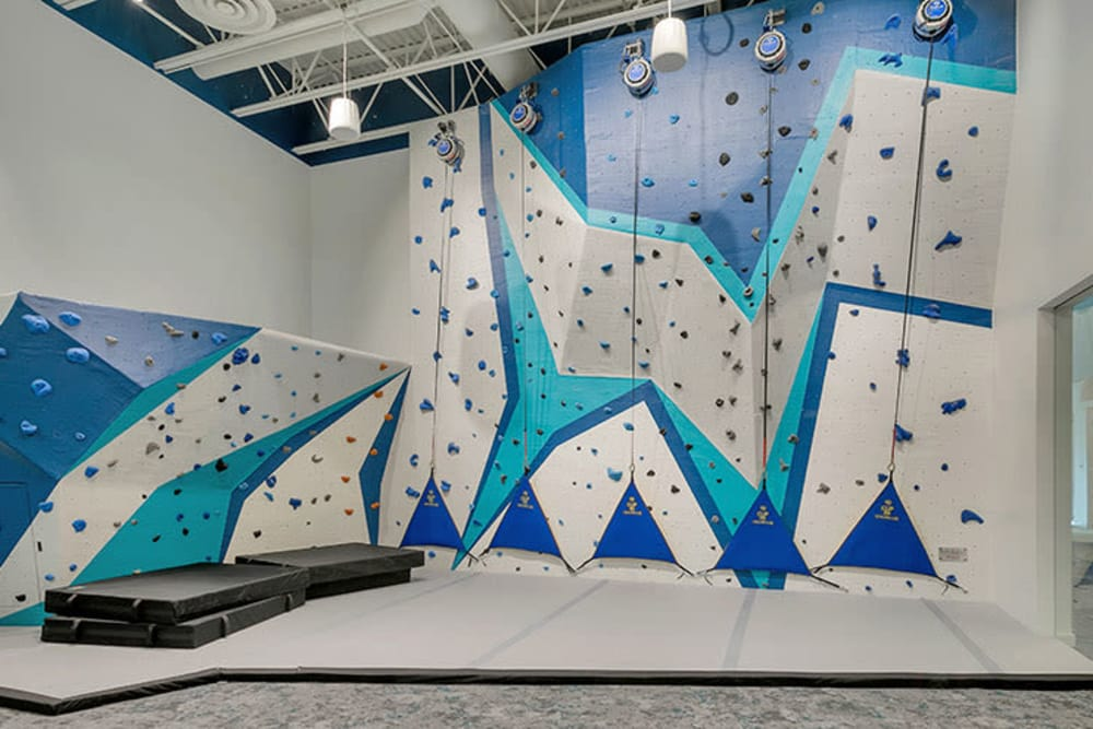 Climbing wall at TAVA Waters in Denver, Colorado