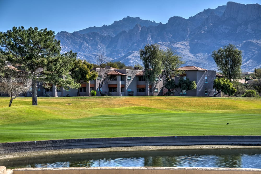 Lush grounds at The Golf Villas at Oro Valley in Tucson, Arizona