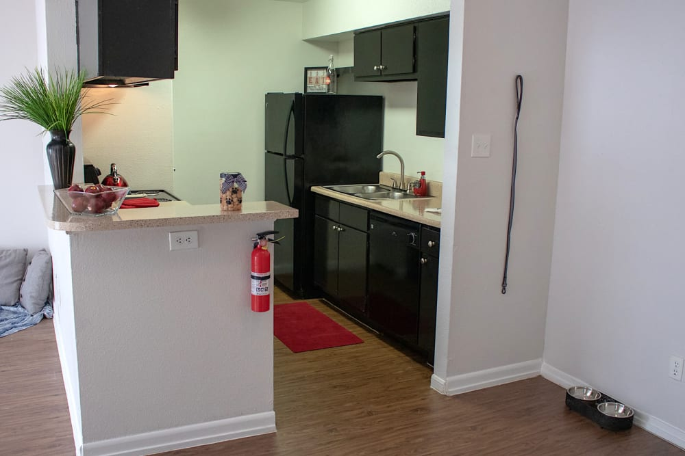 Kitchen interior example at Newport Oaks Apartments in Alvin, Texas