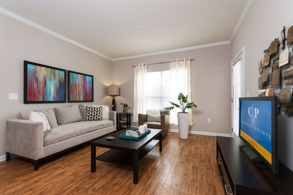 Spacious living rooms at Chenal Pointe at the Divide in Little Rock, Arkansas