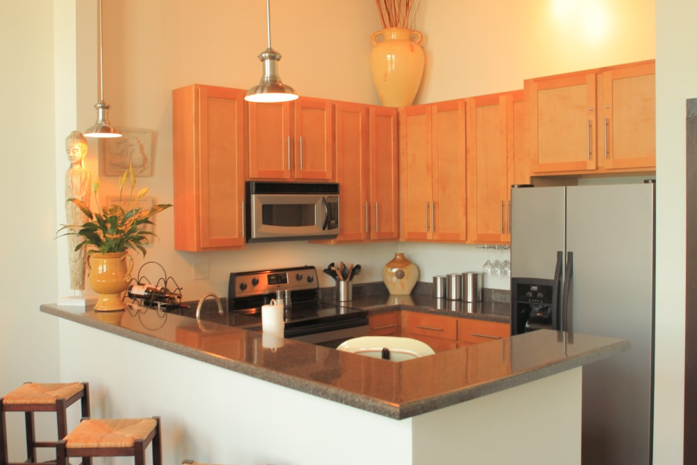 Kitchen counters at The Lofts Of Greenville in Greenville, South Carolina