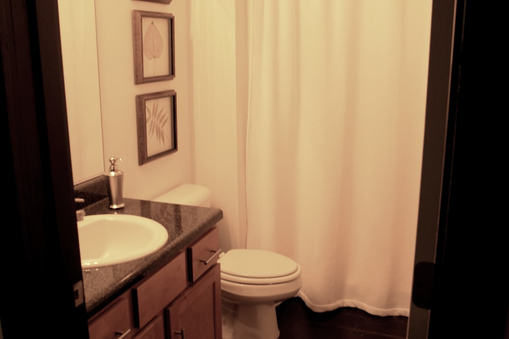 Large bathroom at The Lofts Of Greenville in Greenville, South Carolina