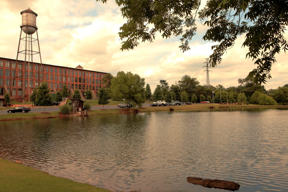 Relaxing pond view at The Lofts Of Greenville in Greenville, South Carolina