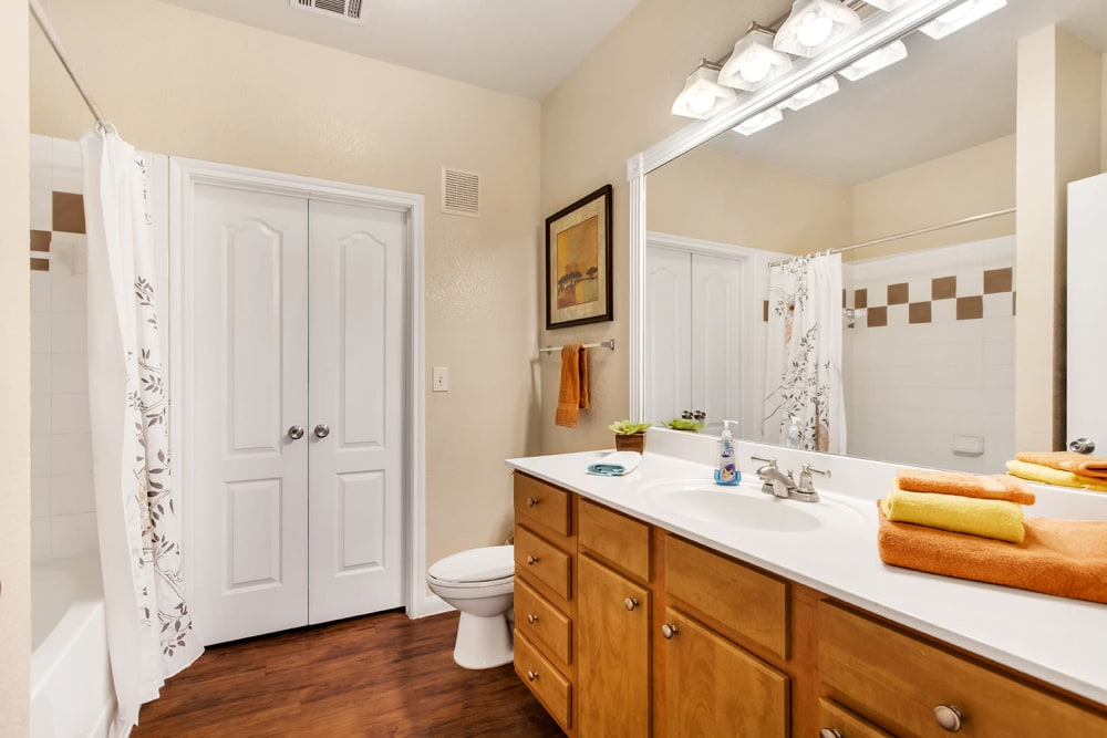 Bathroom at Onion Creek Luxury Apartments in Austin, Texas