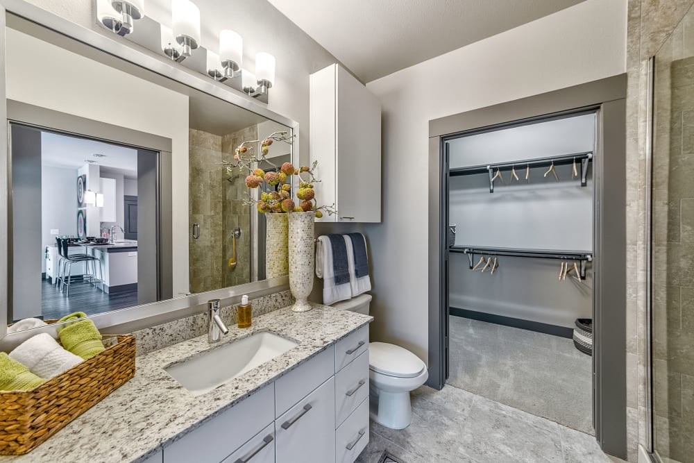 Master bathroom in Dallas, Texas at Axis at Wycliff