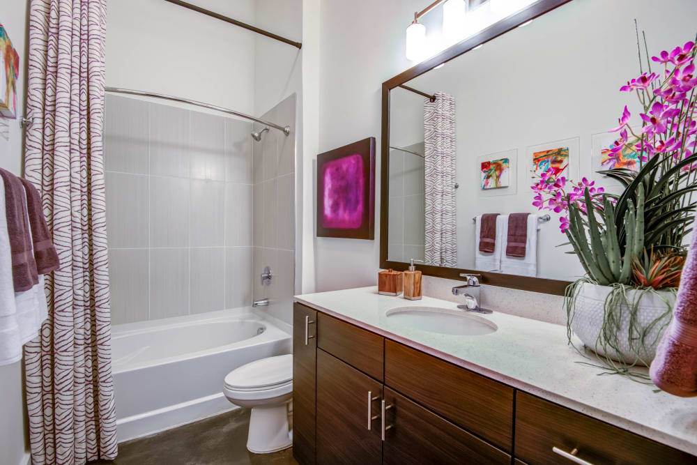 Bathroom model at Mercury NoDa in Charlotte, North Carolina