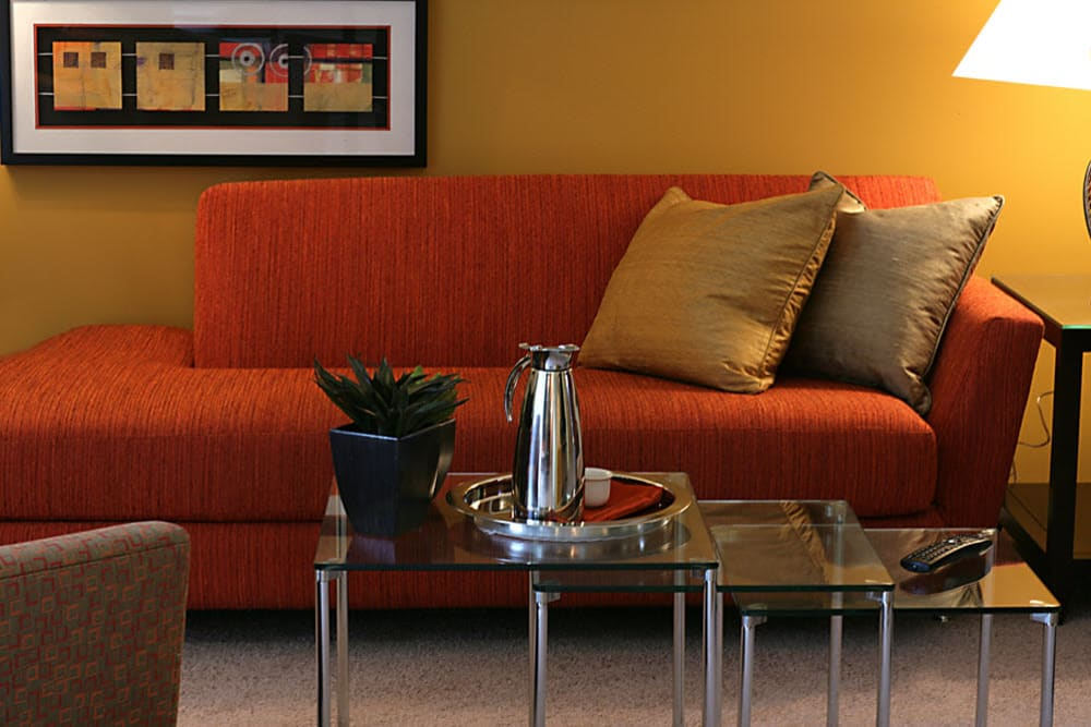 Couch in model living room at Harlo Apartments in Warren, Michigan