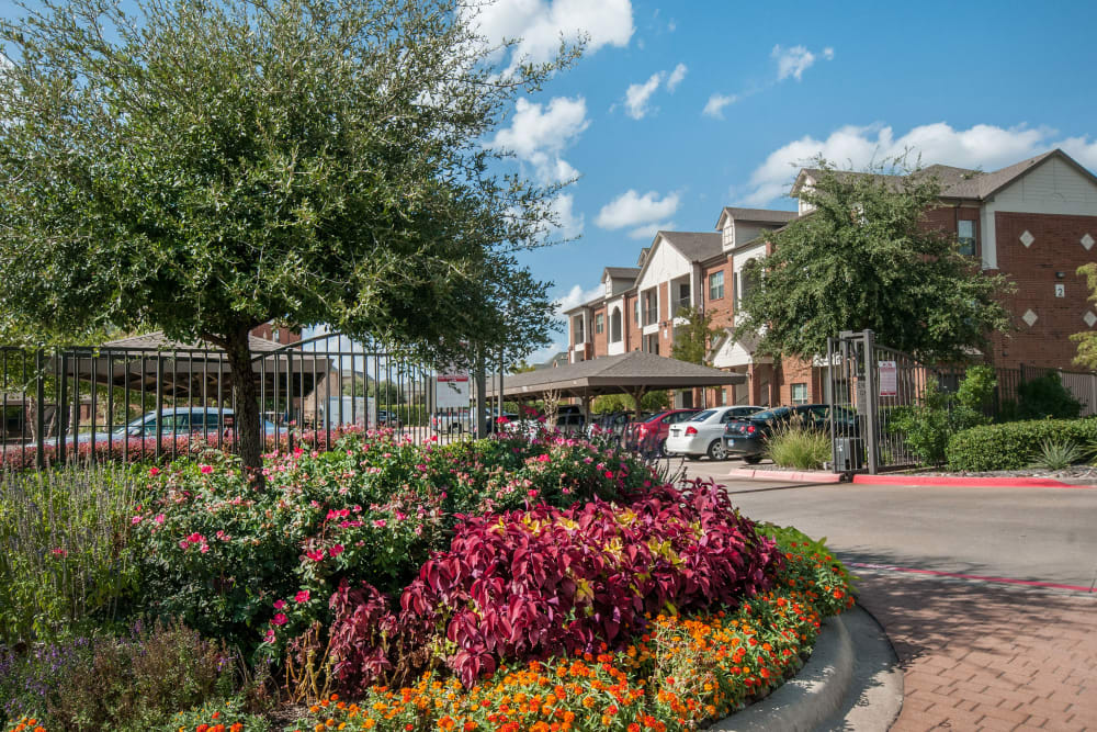 Beautiful landscaping around the property at The Landing at Mansfield in Mansfield, Texas