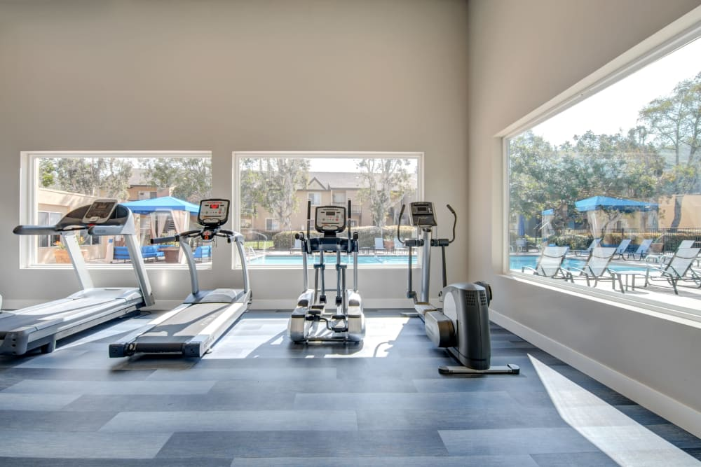 Newly renovated fitness center. Cardio equipment looking through windows to the pool deck