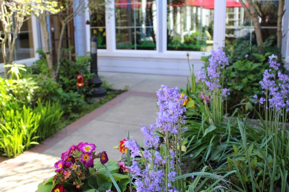 Flower garden at Sweetbriar Villa in Springfield, Oregon