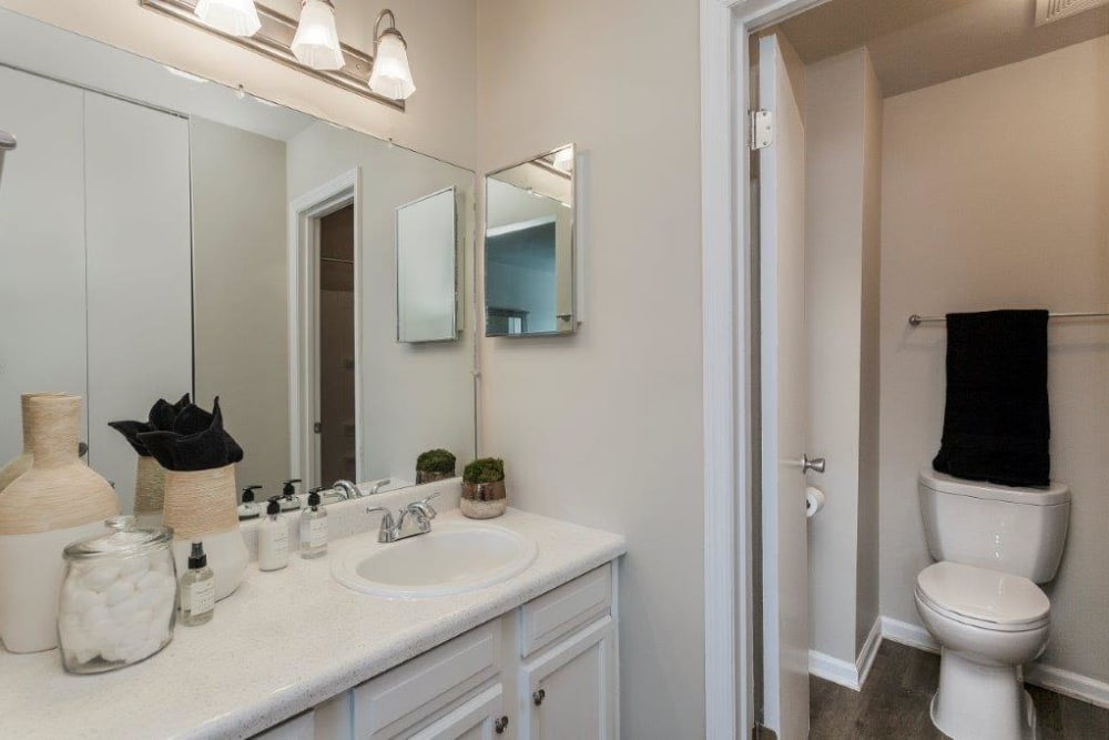 Bathroom at Lincoya Bay Apartments & Townhomes in Nashville, Tennessee