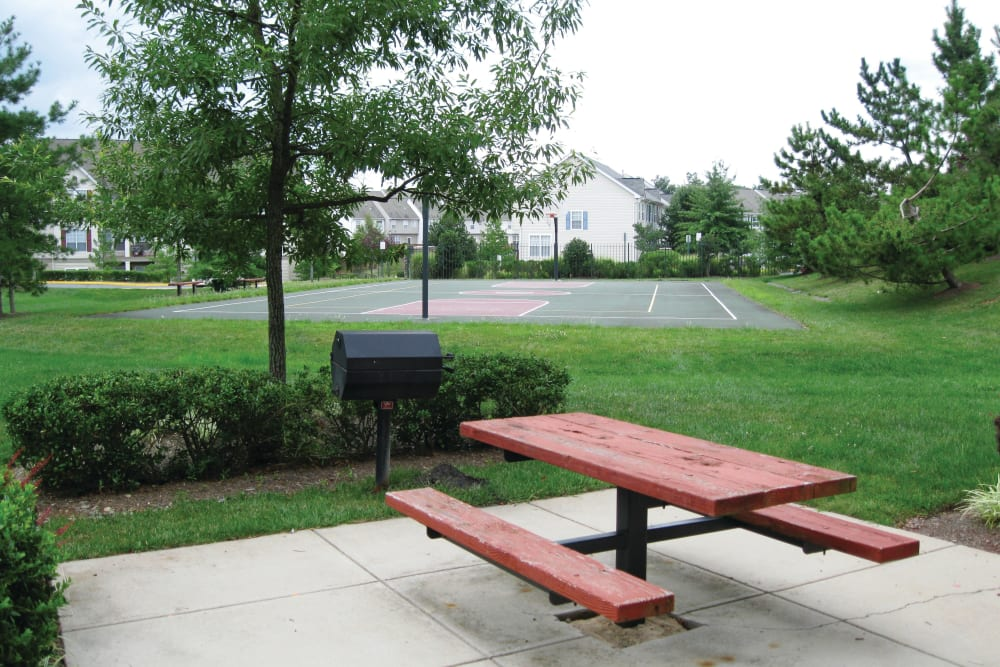 Outdoor Picnic Area at The Village at Potomac Falls Apartment Homes in Sterling, Virginia