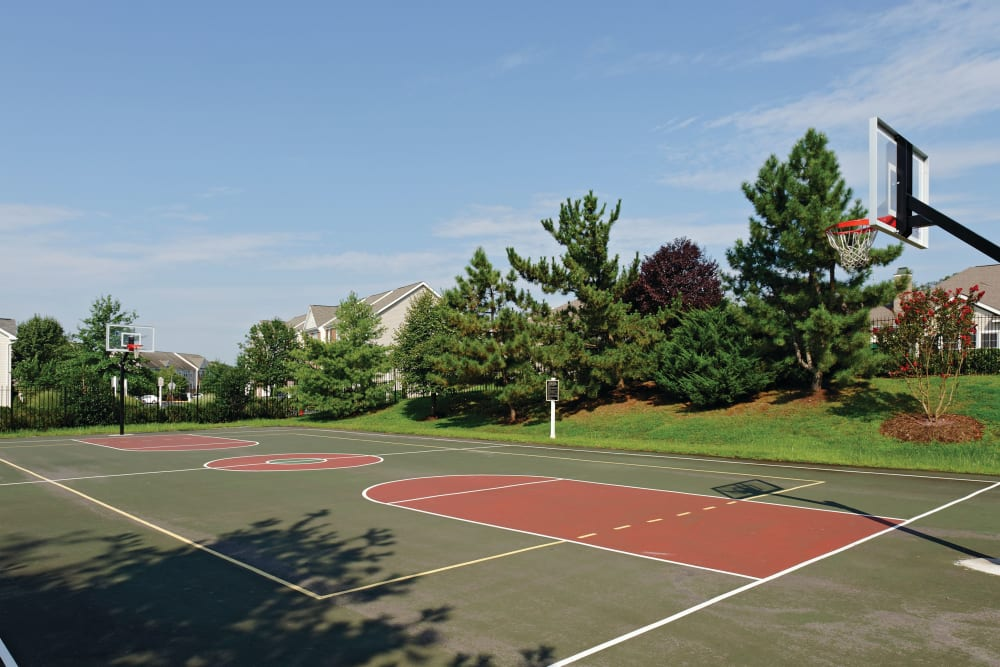 Our Apartments in Sterling, Virginia offer a Basketball Court