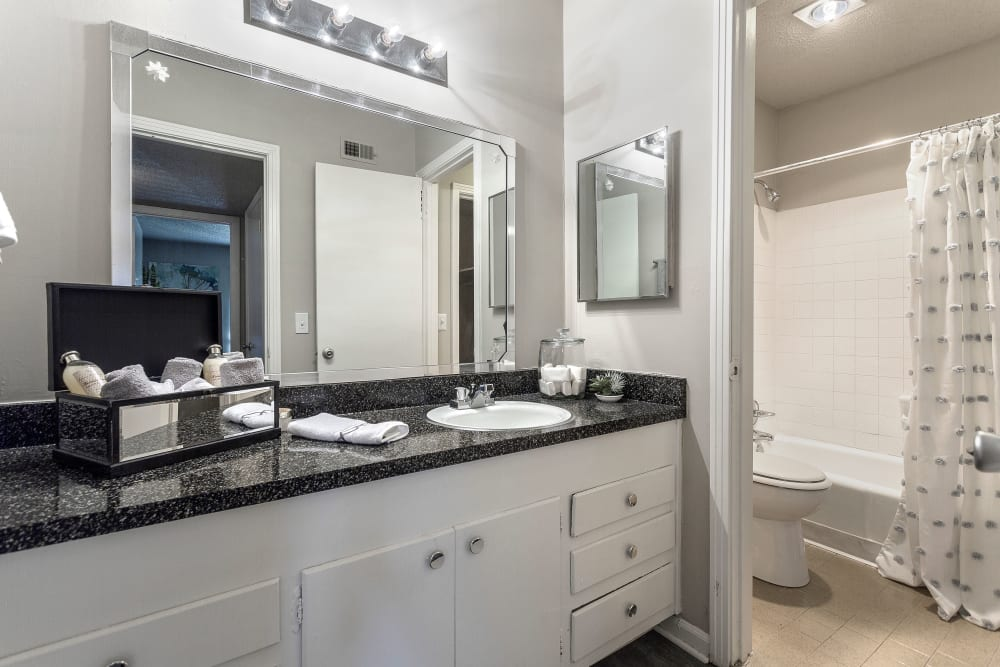 Our Apartments in Nashville, Tennessee showcase a Modern Bathroom