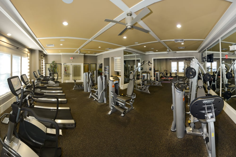 Fitness equipment at Terraces at Town Center in Jacksonville, Florida
