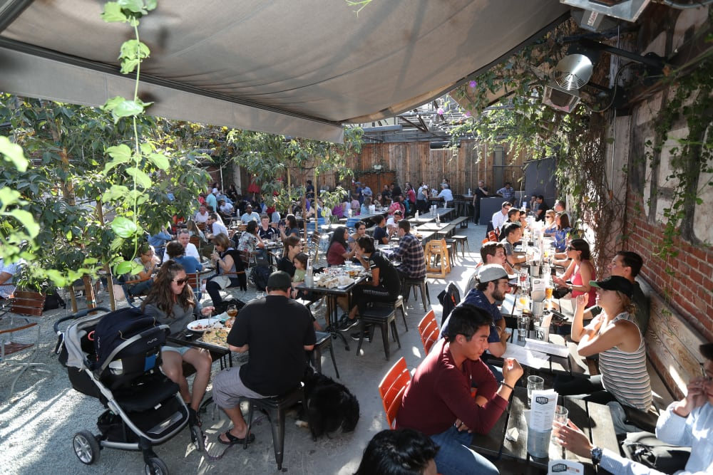 Large group meal near Telegraph Arts in Oakland, California