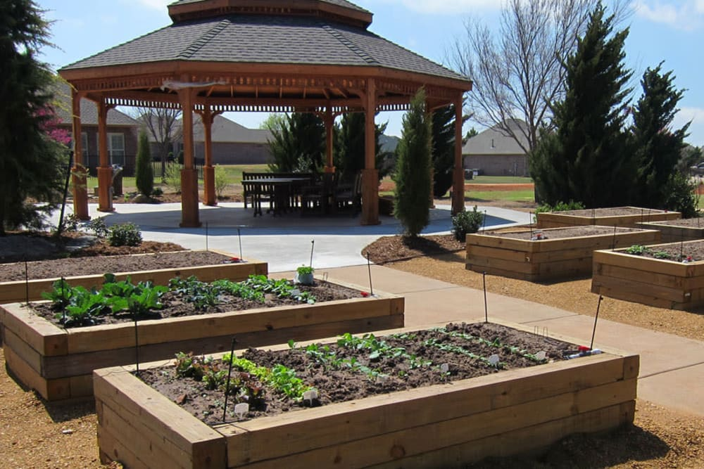 Community planter boxes near the gazebo at Touchmark at Coffee Creek in Edmond, Oklahoma