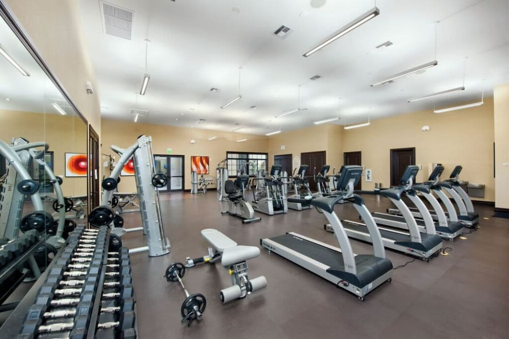 Well-equipped fitness center at Doral View Apartments in Miami, Florida