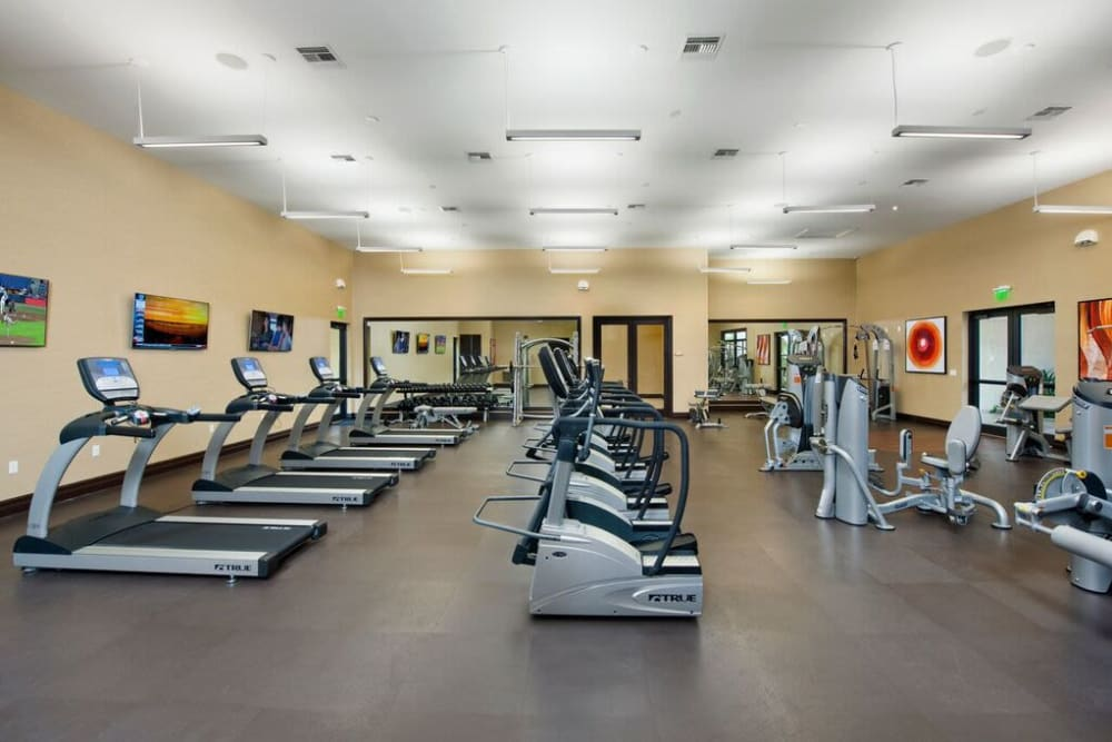 Cardio machines and more in the fitness center at Doral View Apartments in Miami, Florida