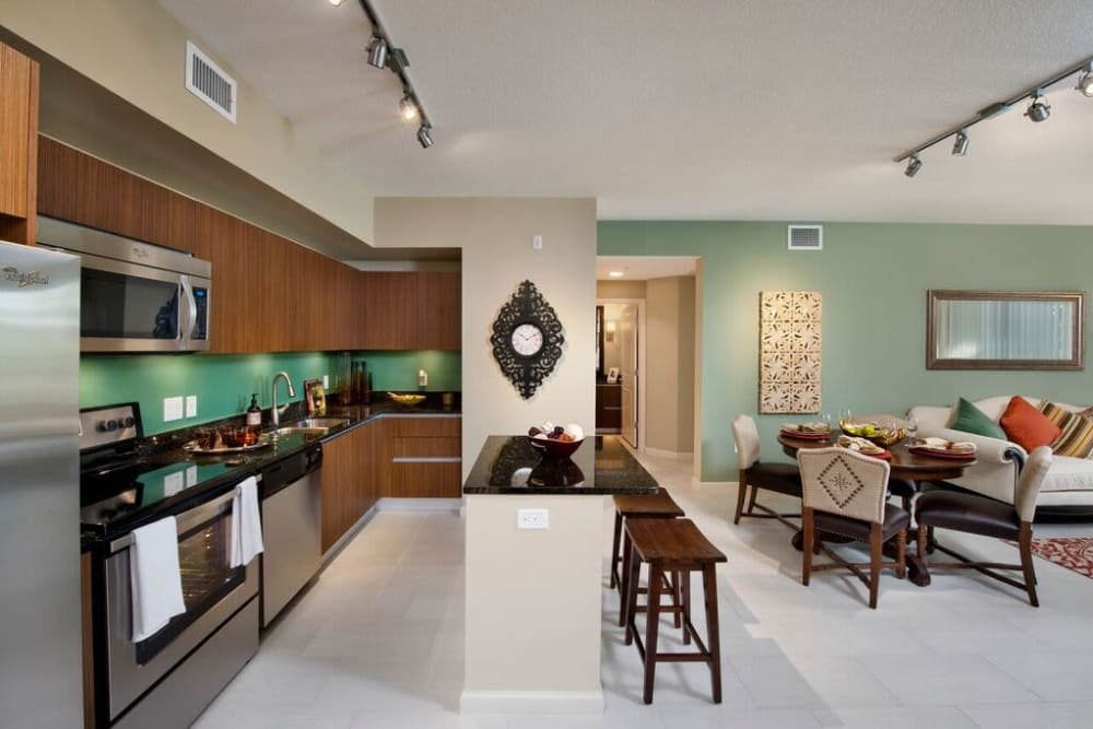Beautiful gourmet kitchen with stainless-steel appliances in a model home at Doral View Apartments in Miami, Florida