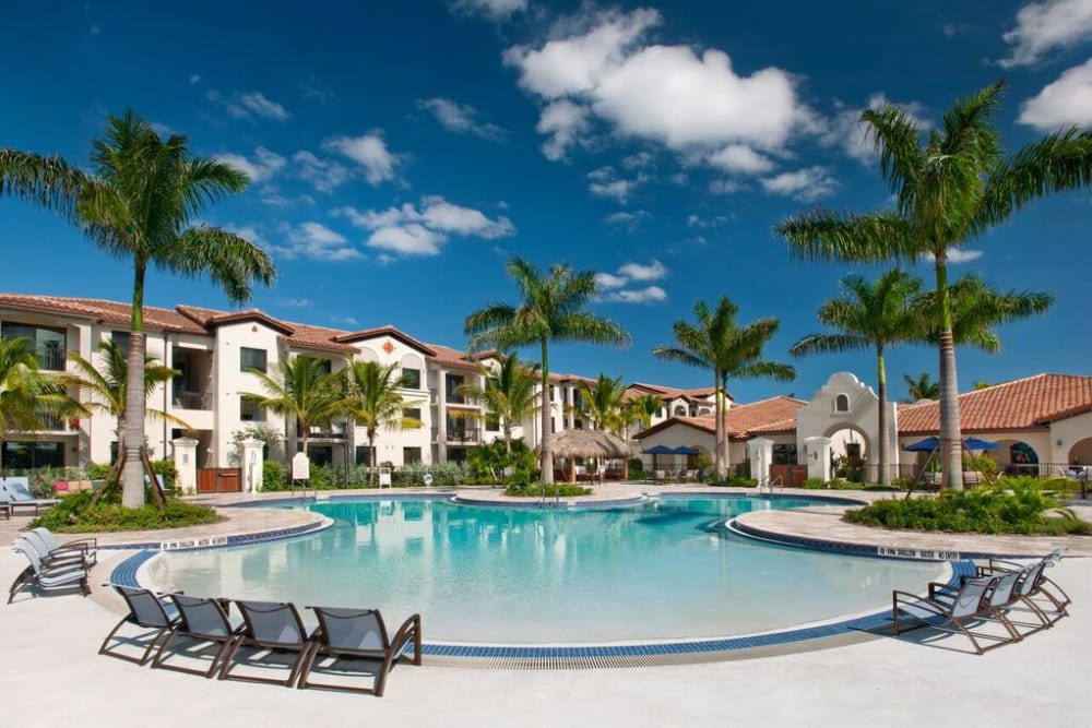 Gorgeous swimming pool area surrounded by palm trees at Doral View Apartments in Miami, Florida