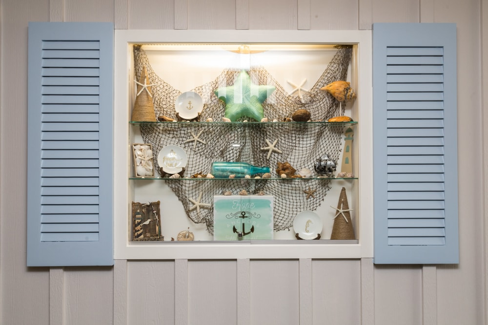 Sea shells on display at Artis Senior Living of Brick in Brick, New Jersey