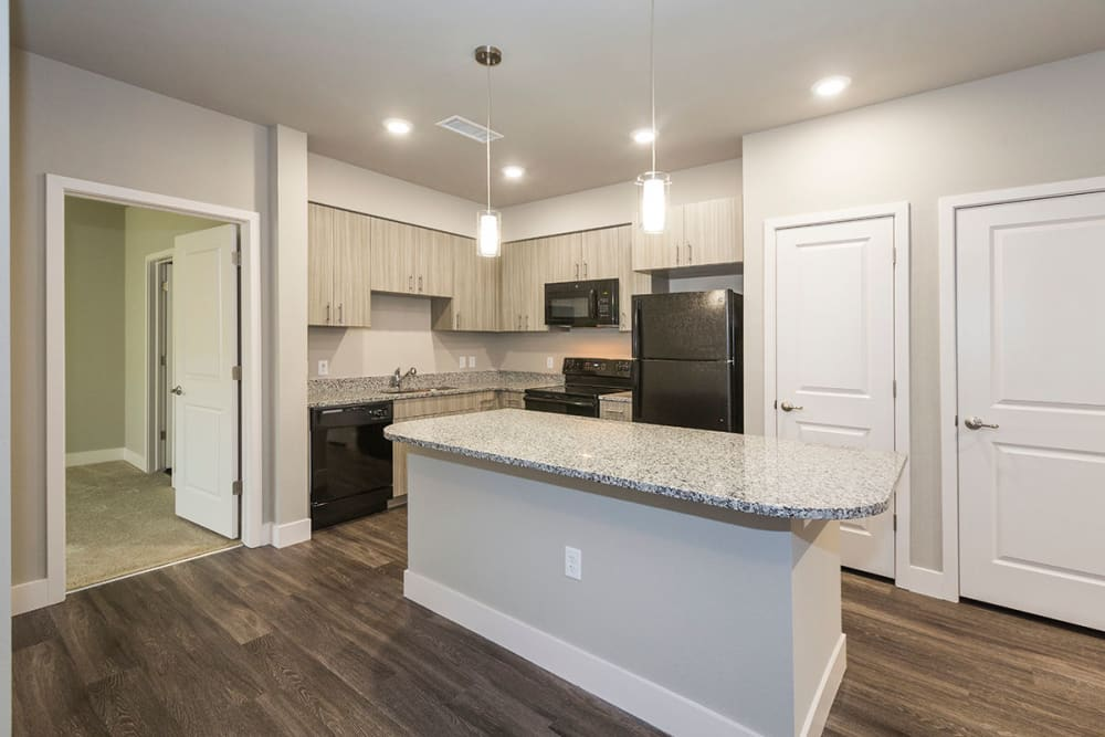 Kitchen with sleek black appliances at The Overlook at Interquest in Colorado Springs, Colorado