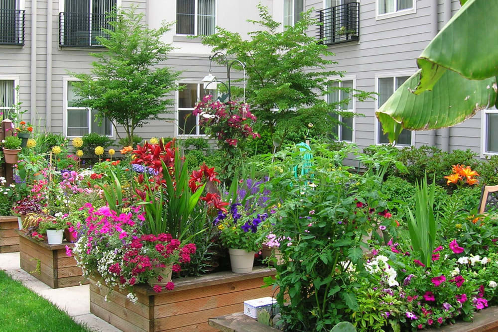 Beautiful community garden filled with flowers at The Heights at Columbia Knoll in Portland, Oregon