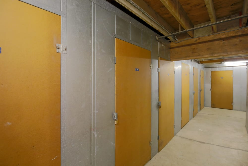 Business storage space at Storage Solutions in Capistrano Beach, California